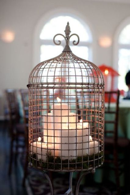 Image source:   Use a birdcage to decorate your space!