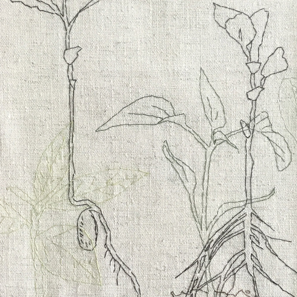 Line Drawing with Embroidery