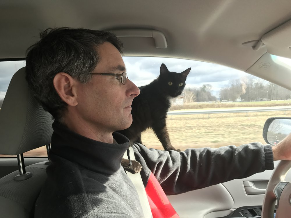 Juke, helping with the drive home from Vermont.
