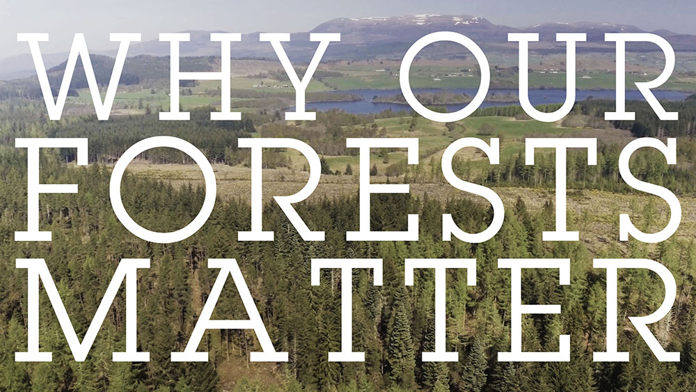 Why Our Forests.. Role - D.O.P./Edit - developed by Thomas Hogben. Learn More →