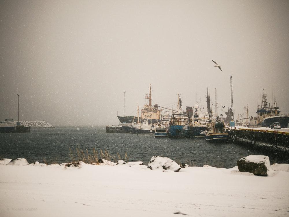The harbour at Reykjanesbær.