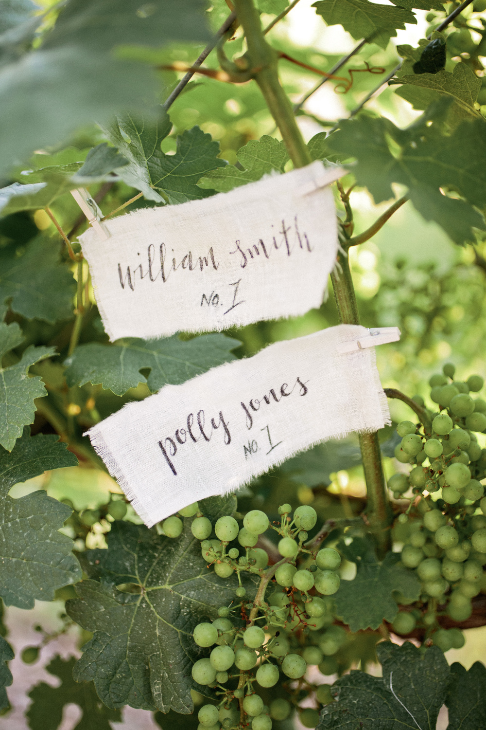 Hudson-Nichols-Vineyard-Wedding-Calligraphy-Vines-Placecard0172.jpg