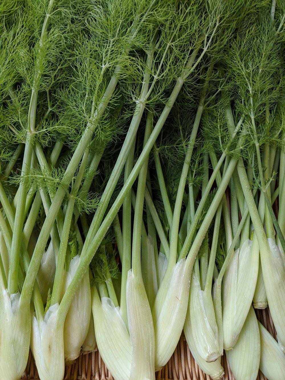 Market Shopping List - 4 bulbs fennel1 bunch radishes1 bunch daikon radish1 lb carrots2 lb mixed greens1 bu fresh mint1 bu fresh cilantro1 bag kale or collards or radish tops1 bag spinach2, 4 oz preferred cut of beef