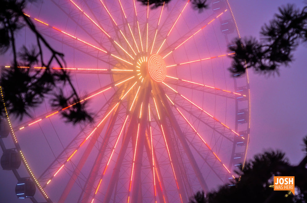 Seattle Great Wheel 3