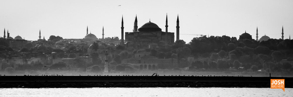 07TURKEY Istanbul (to-from) May 7-15 2017 (306).jpg