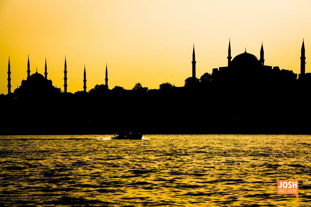 07TURKEY Istanbul (to-from) May 7-15 2017 (316).jpg
