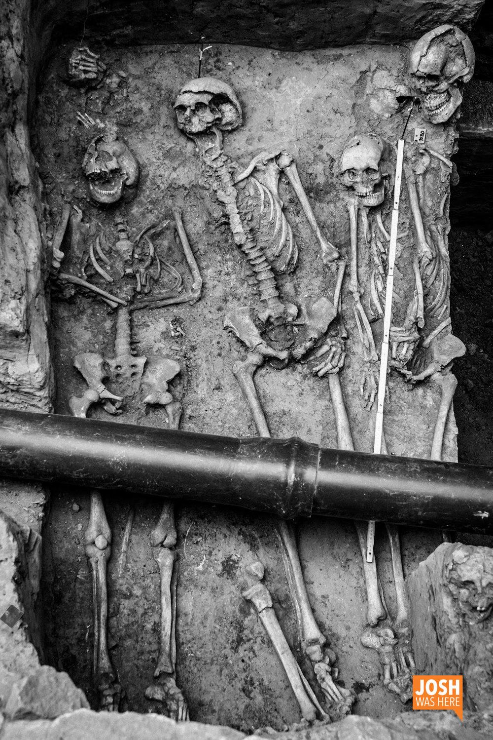 Skeleton dig site