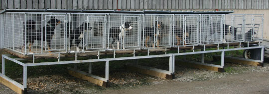 our outdoor new zealand style dog kennels and runs can be built to your bespoke design to suit large or small farm dogs please contact us to discuss your
