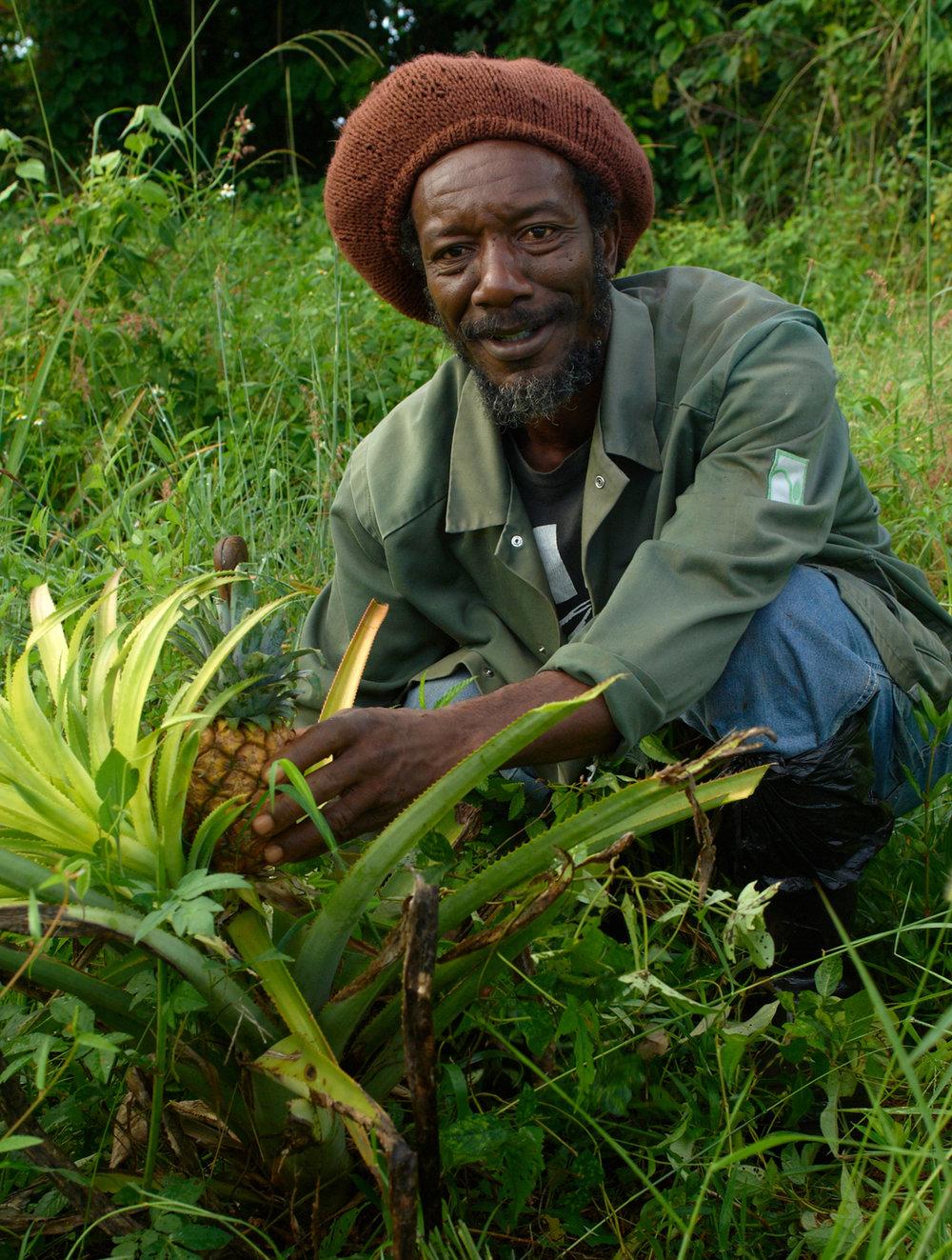 Organic Farm-091.jpg