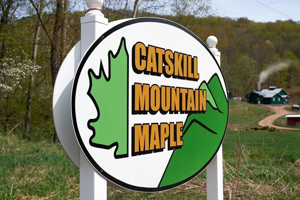 Catskills 5-10-2015-011.jpg