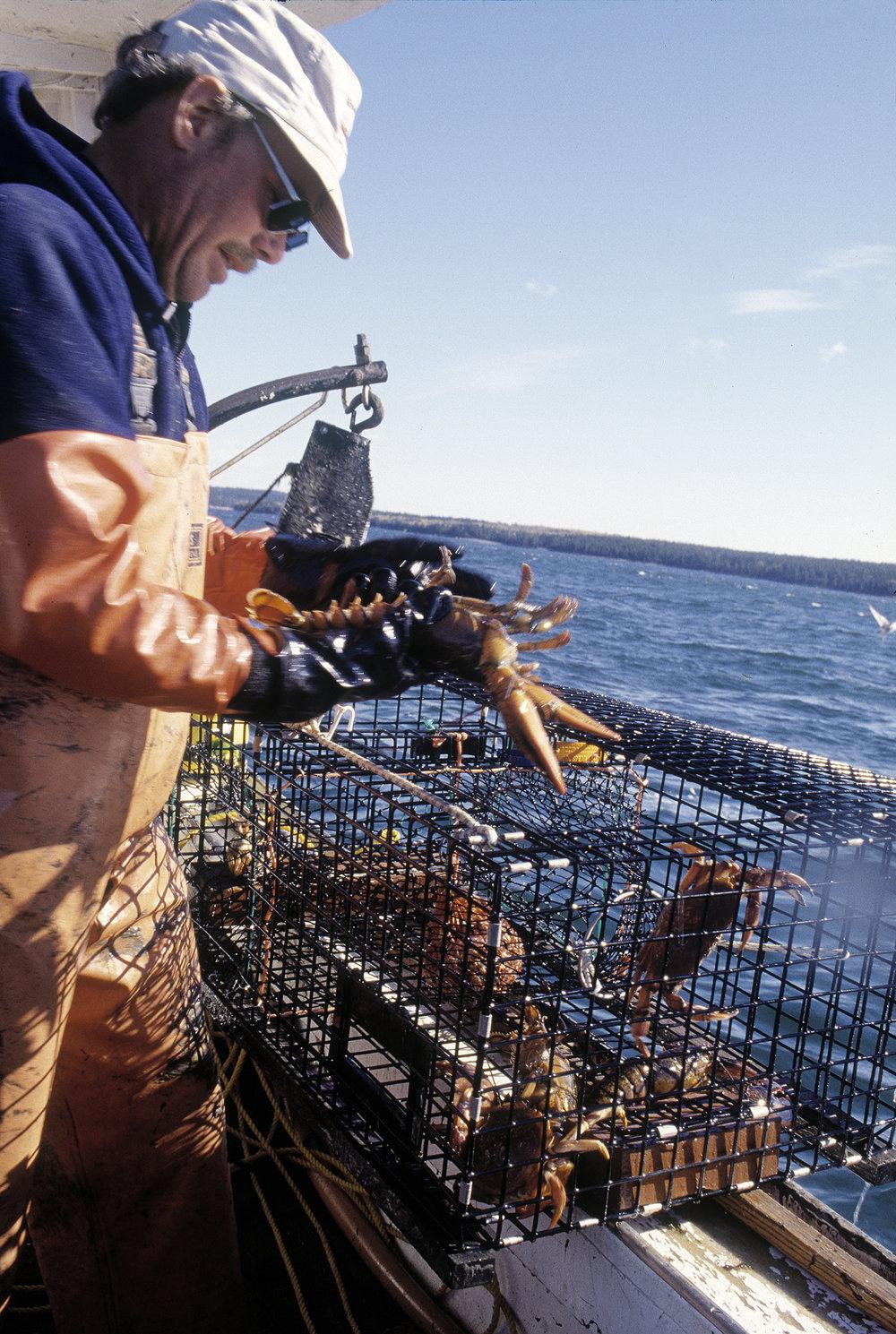 David Spear lobsterboat-9.jpg