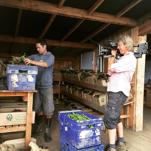 We're all gonna be on the tele! Here's our Ed being filmed at his farm for Countryfile. Watch out for it on Aug 13th. #countryfile #dartmoor #farmer #artisan @chagfood