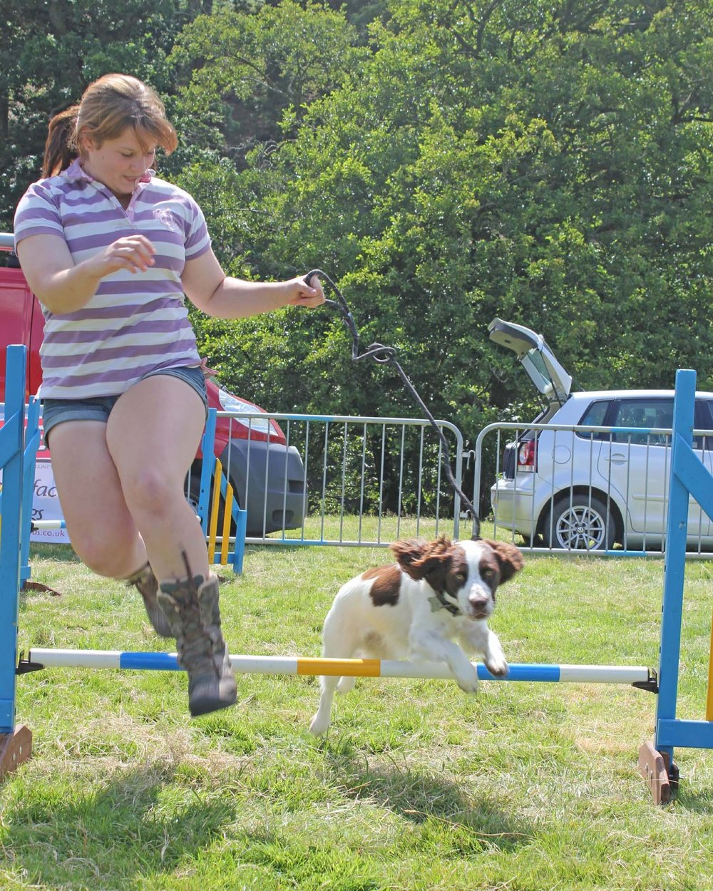 The Have-a-Go Dog Agility competition