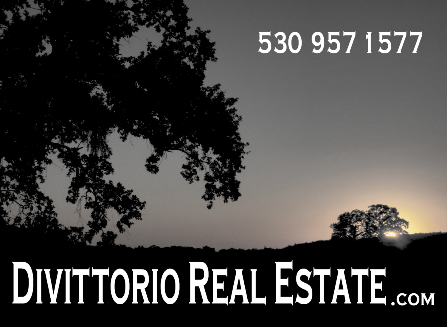 Divittorio Real Estate