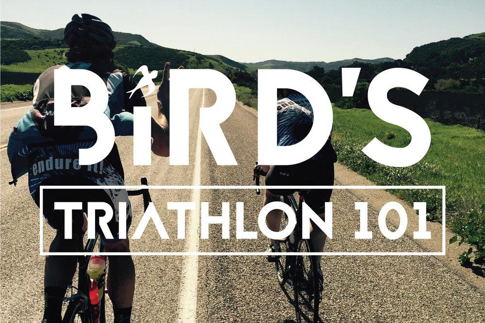 Bird's triathlon 101 clinic 2_Post Card.jpg