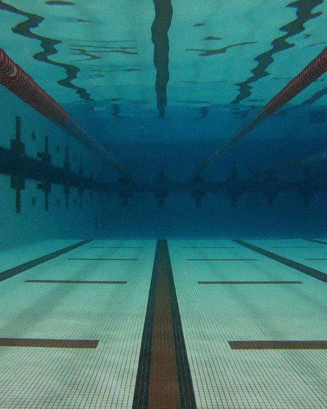I've finally started getting back in the pool on a regular basis and it feels great! #endureit #swim #endureitsports #swimbikerun #trainning #gopro #hero6 #fun