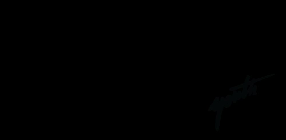 MSM_HSM_Logo_MSM_Small_Black.png