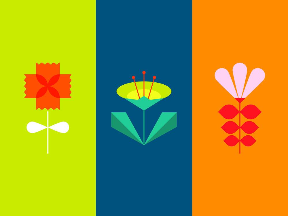 A Series of Botanical Illustrations