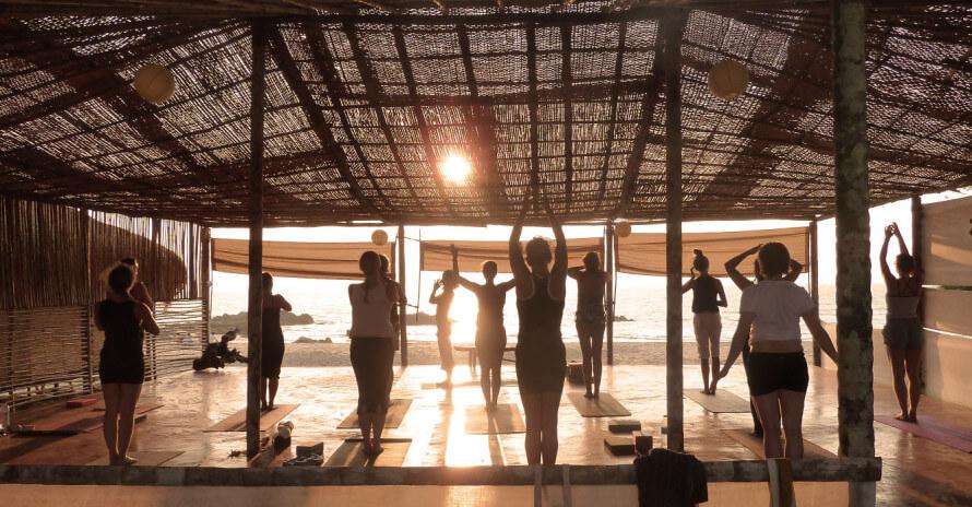 Dan Morgan   DCMLifestyle & Yoga   Bamboo Goa