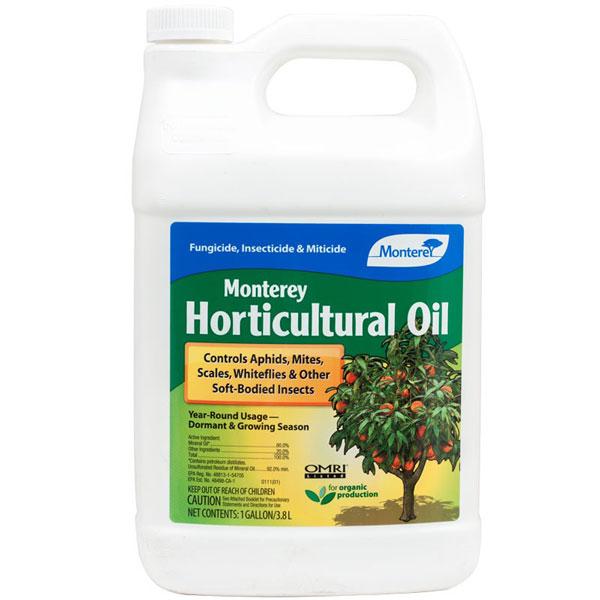 MONTEREY MINERAL OIL.jpg