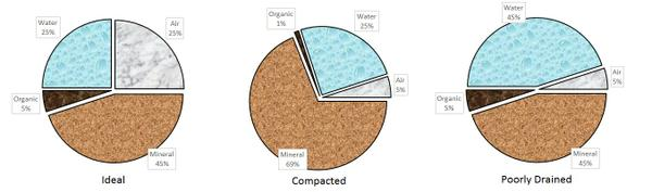 Porespace is a higher percentage in ideal soils. PHOTO: NC STATE