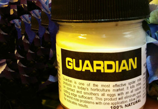 GUARDIAN TESTED POSITIVE FOR ABEMECTIN