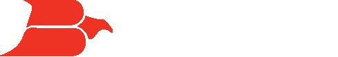 bayrprint-logo WEB.png