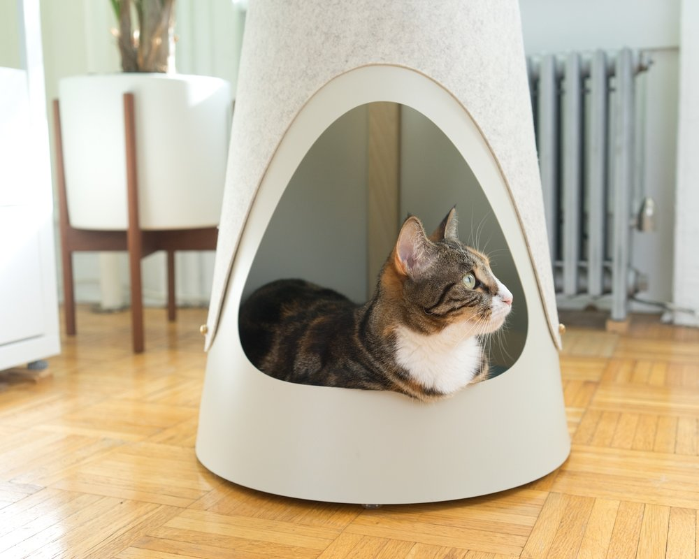 SLEEPING NOOK - The Cone has the perfect spot for your kitty to do some next-level napping. Elevated off the floor, with a soft felt pad, it's sure to be the most coveted seat in the house. And for cats who do next-level shedding, the pad is removable and easily cleaned.