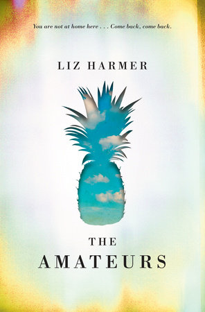 Liz Harmer.  The Amateurs . Knopf Canada. $32.95, 336 pp., ISBN: 9780345811240