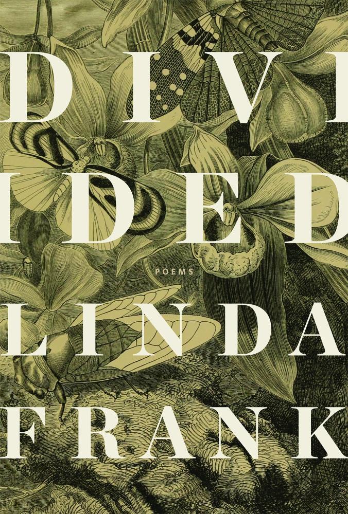 Linda Frank.  Divided . Wolsak & Wynn, $18.00, 96 pp., ISBN:9781928088585
