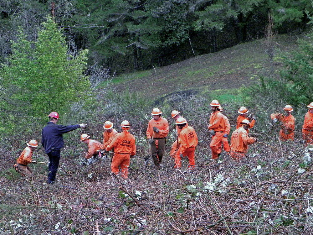 "RIP KIRBY / THE INDEPENDENT   Eel River Conservation Camp workers last week cleared several acres of brush from Bear Canyon. ""People have been camping out there and several fires [have been] started in the area,"" Second District Supervisor Estelle Fennell said late last year."