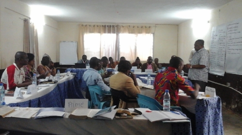 Emmanuel leading a Training of Trainers session ~ Yaounde, Cameron