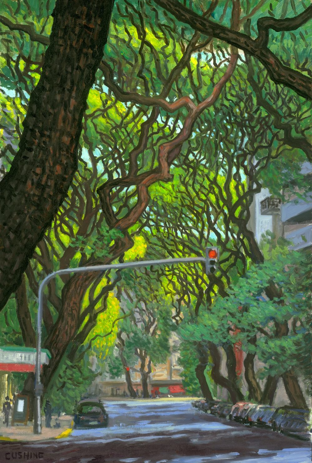 """Tipa Trees, Calle Coronel Diaz, Afternoon"" 31 x 21"" $2000.00"