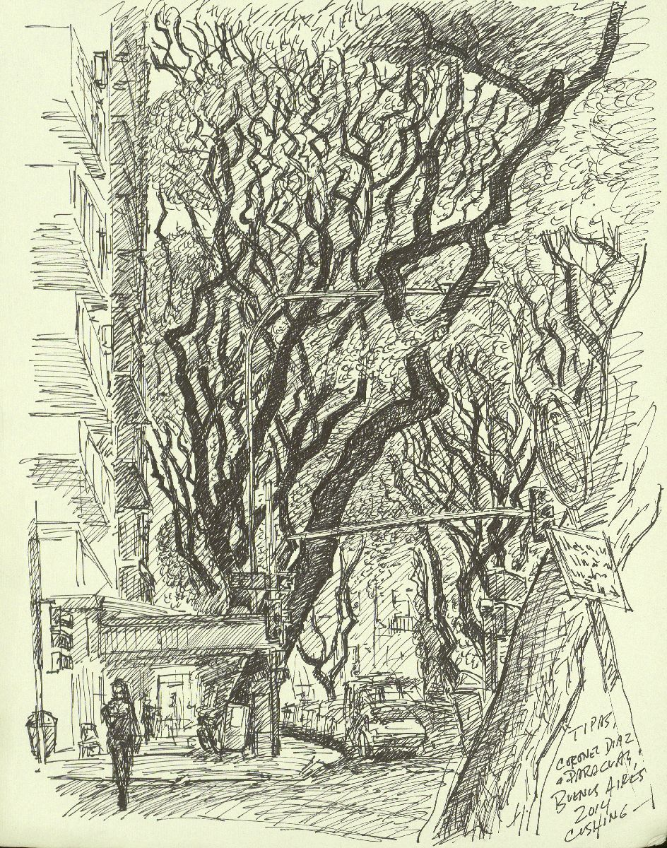 """ trip trees on Calle Coronel Diaz"". 12 x 9""  $250.00 (framed)"