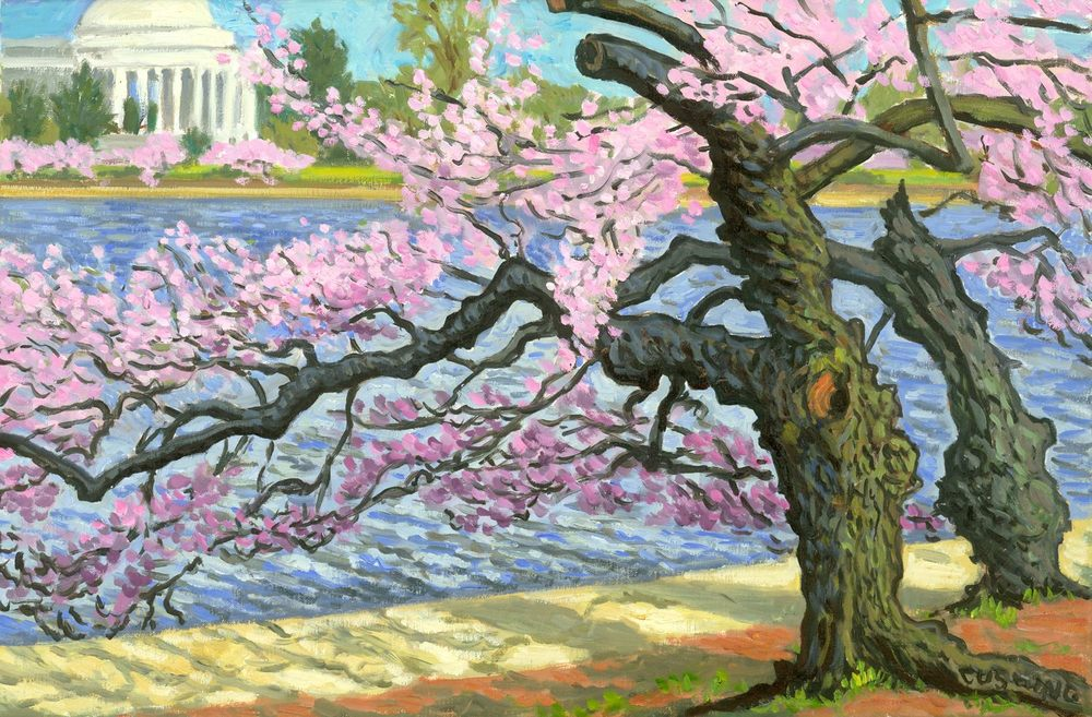 """Cherry Blossom, Tidal Basin""  16 x 24"" (sold)"