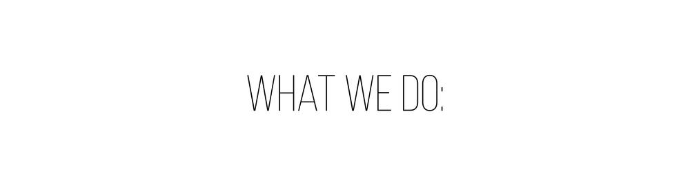 what we do header.jpg