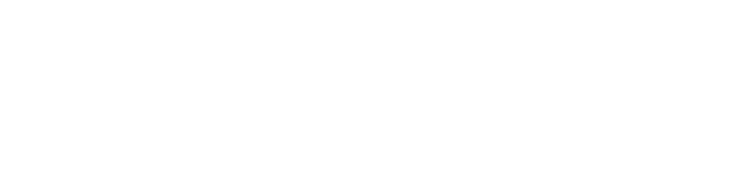 The Sally Conference