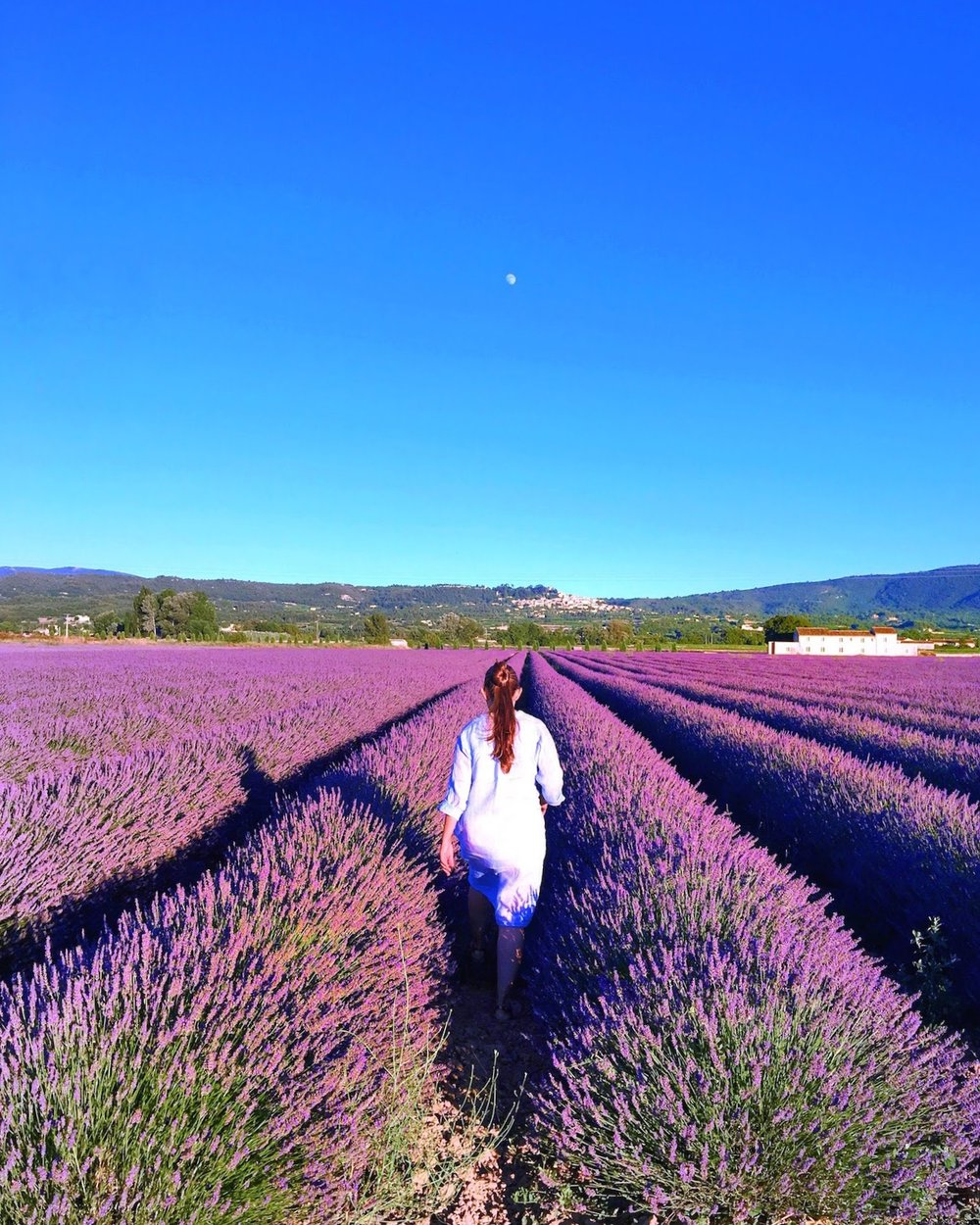 The Provence Experience - June 26 - July 1, 2018