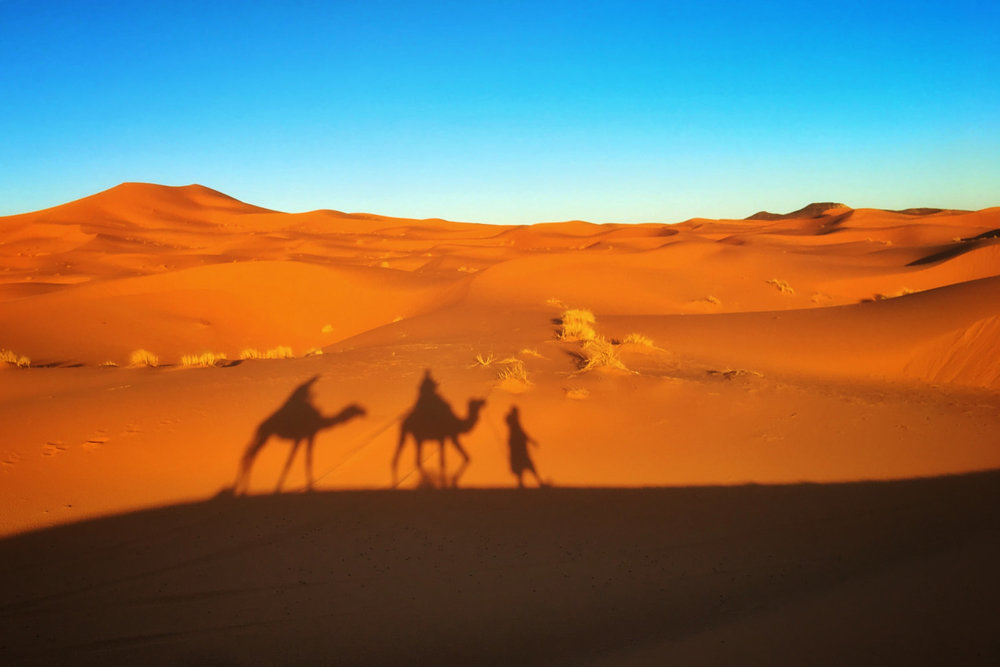 The Morocco Gastronomad Experience -