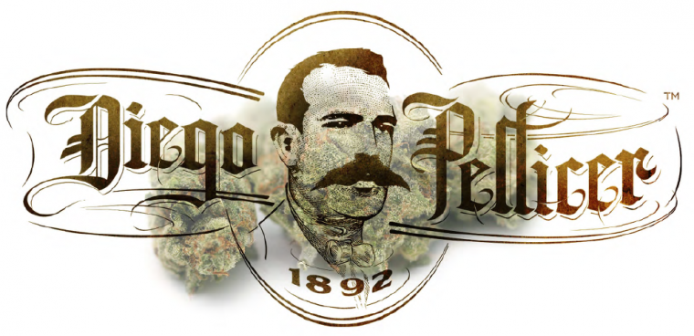 diego pellicer.png