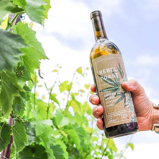 Clever chemistry: ebbu's cutting edge #cannabinoid science and beverage partnership with Rebel Coast Winery were featured in The Economist. Read the details at our link in bio. ✨ #poweredbyebbu #wine #thcwine