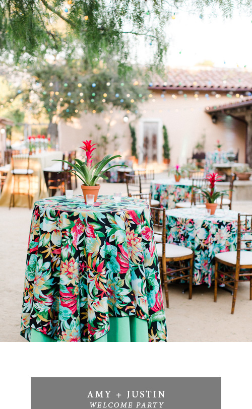 magnolia_portfolio_amy_justin_welcome.jpg