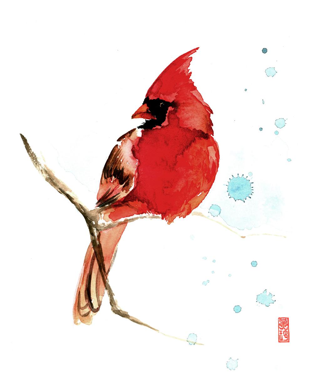 Cardinal 8x10.jpg