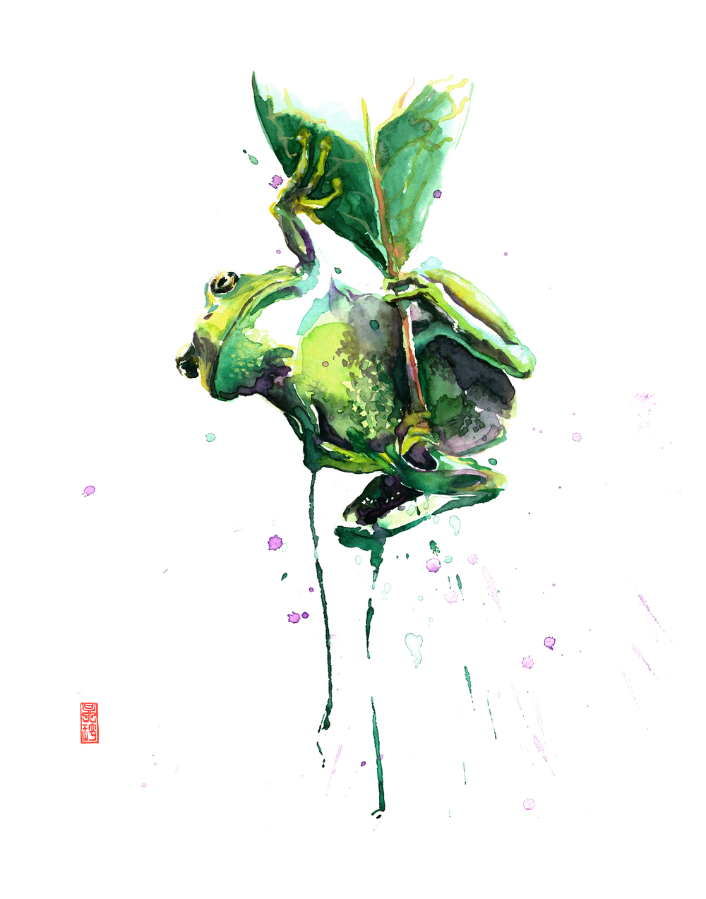 Tree frog 8x10.jpg