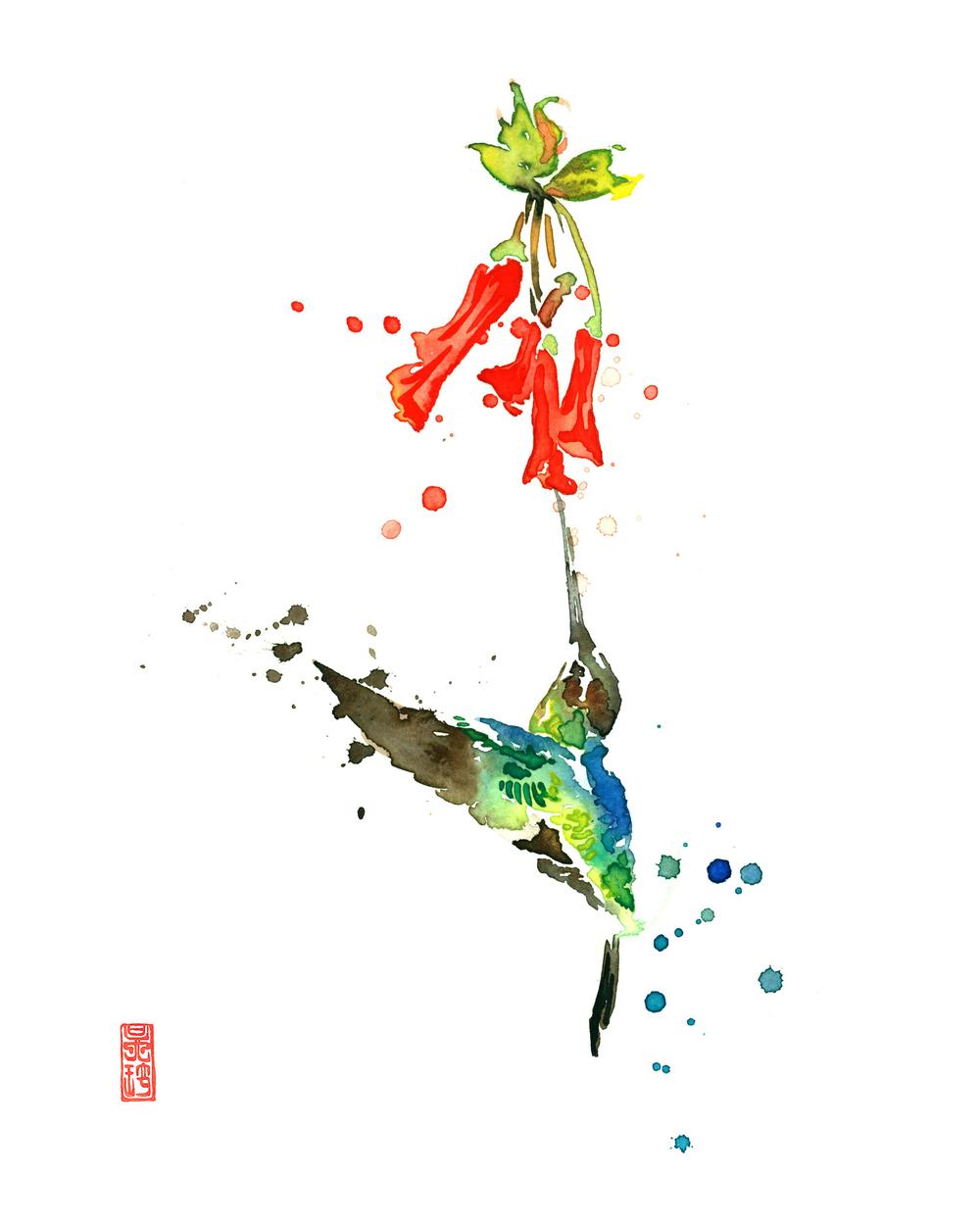 Hummingbird 1 8x10.jpg