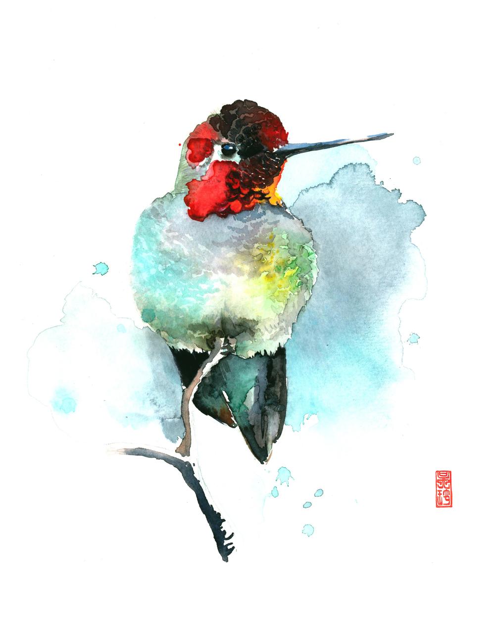 Hummingbird 4 11x14.jpg