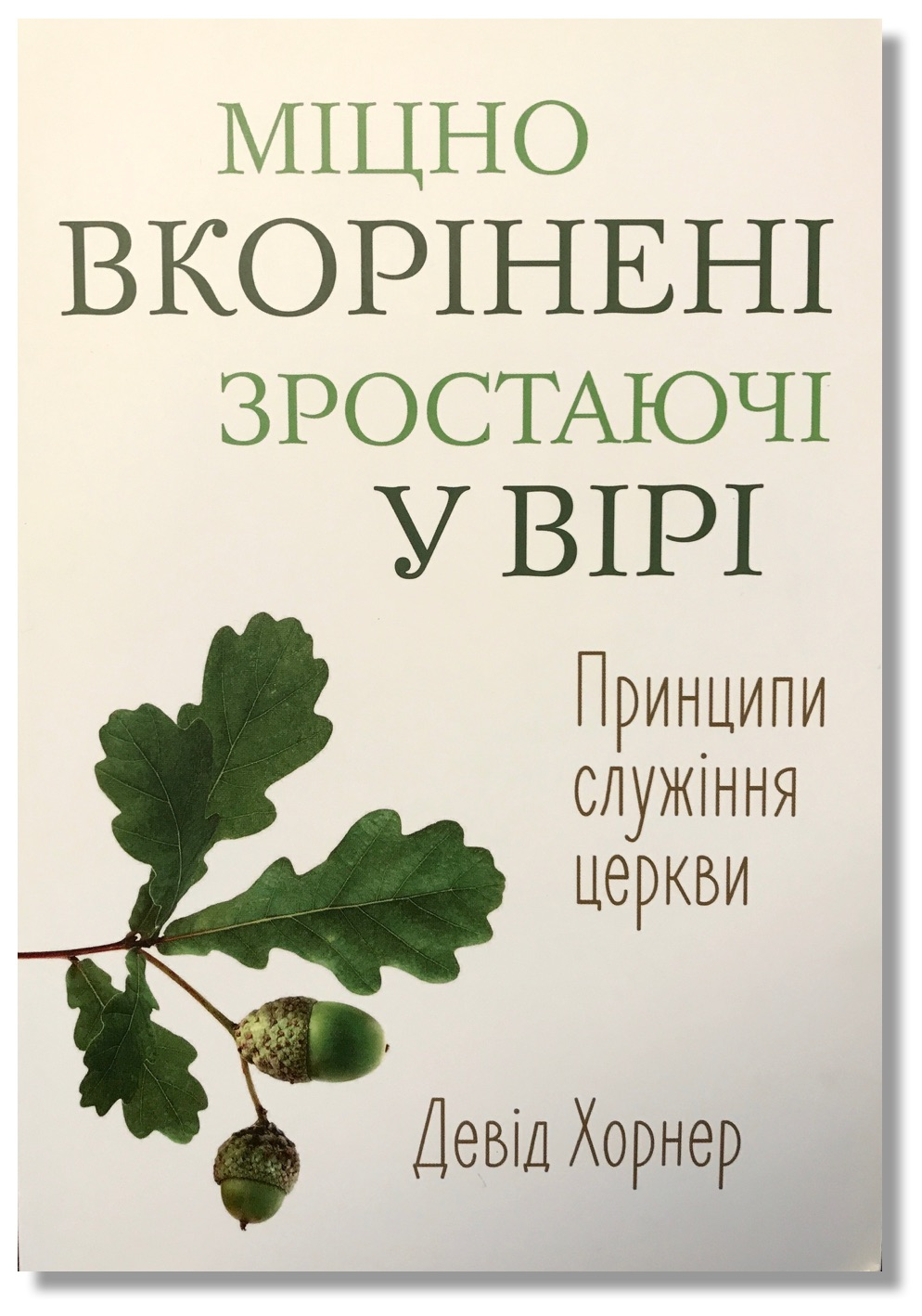 My book,  firmly rooted, faithfully growing , was translated and published in ukrainian and is being used to train church leaders in the baptist youth of ukraine.