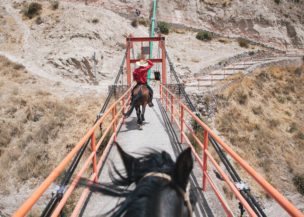 20121122_Peru_colca_Canyon_18.jpg