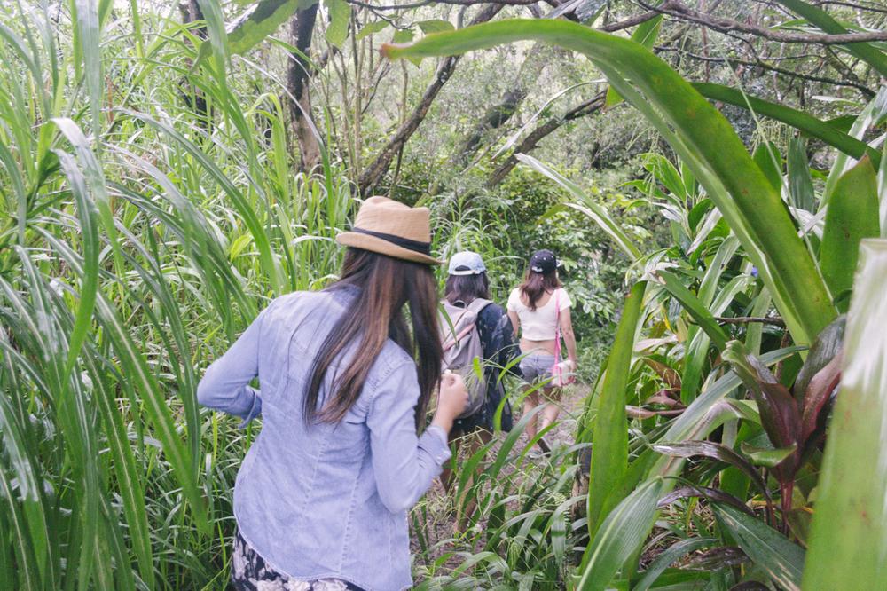 Navigating the jungle of lurveeeee