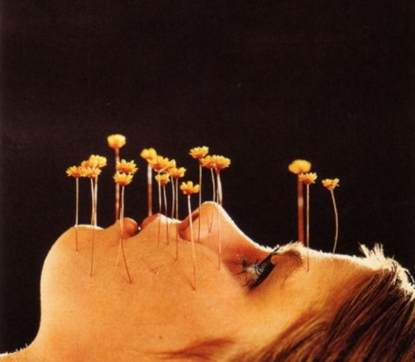 a Finnish poster (circa 1969)on the dangers of marijuana &LSD use...looking suspiciously like acupuncture ( Source )